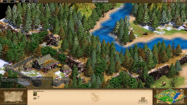 Age of Empires II HD Edition on PC screenshot #2