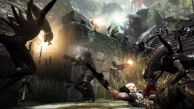 Aliens vs Predator on PC screenshot #5