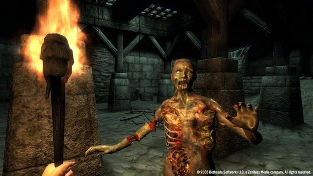 The Elder Scrolls IV: Oblivion Game of the Year Edition Deluxe on PC screenshot #2