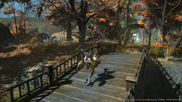 FINAL FANTASY® XIV: A Realm Reborn™ on PC screenshot #5