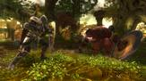 Kingdoms of Amalur - Reckoning on PC screenshot thumbnail #1