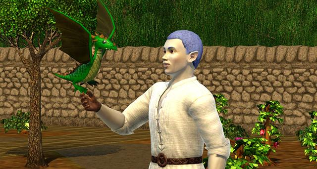The Sims 3: Dragon Valley (NA) on PC screenshot #6
