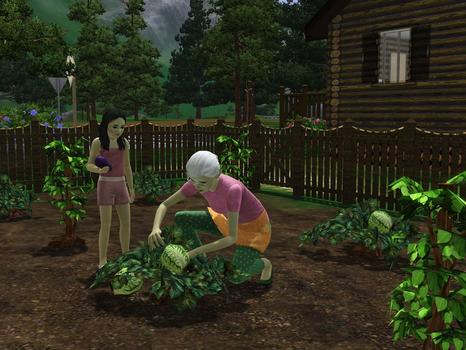 The Sims 3: Hidden Springs (NA) on PC screenshot #3