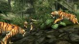 Tomb Raider: Underworld on PC screenshot thumbnail #3